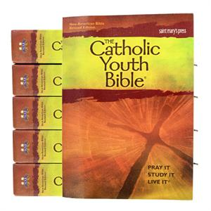 Catholic Youth Bible Bulk Discount