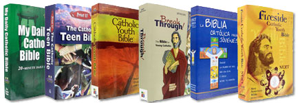 Catholic Youth Bible Top Sellers