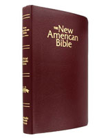 Catholic Bible - Burgandy Imitation Leather - NABRE