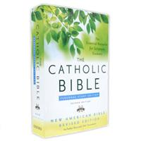 Catholic Personal Study Bible-NABRE- Paperback