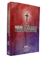 New Catholic Answer Bible - Paperback