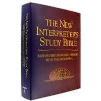 New Interpreters Study Bible - NRSV